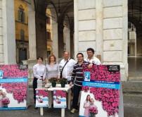 AIRC Start-up Unit di Pisa testimonial per la campagna Azalea della Ricerca