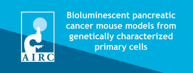 Bioluminescent pancreatic cancer mouse models from genetically characterized primary cells
