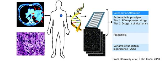 Genetic profiling and pharmacogenetics