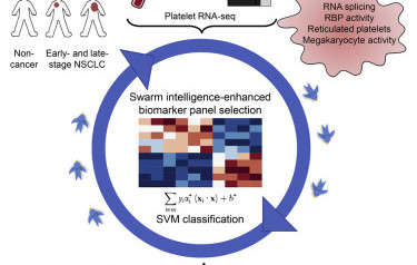 "Cancer Cell paper on ""Swarm Intelligence-Enhanced Detection of Non-Small-Cell Lung Cancer Using Tumor-Educated Platelets"""