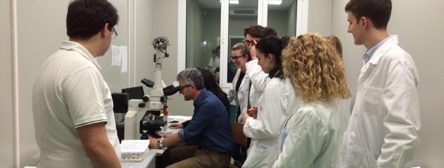 Ricerca sul cancro, dall'università alle scuole: un progetto per avvicinare alla ricerca medico-scientifica gli studenti delle superiori