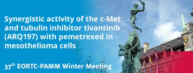 Synergistic activity of the c-Met and tubulin inhibitor tivantinib (ARQ197) with pemetrexed in mesothelioma cells